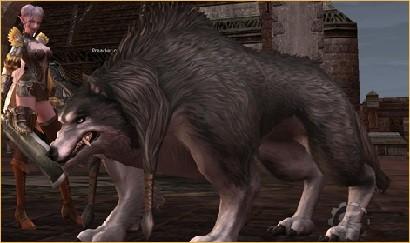 wolves., l2 gracia final hopzone, l2top pvp