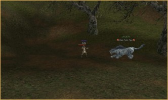 Tiger, Wolf and a Hunter, lineage 2 faction, enlightenment l2 drop