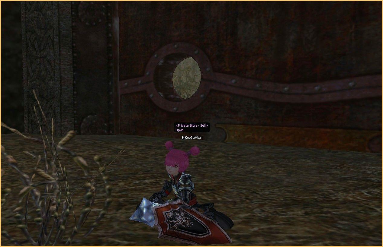 Lineage 2 Screenshot: Стримы Л2
